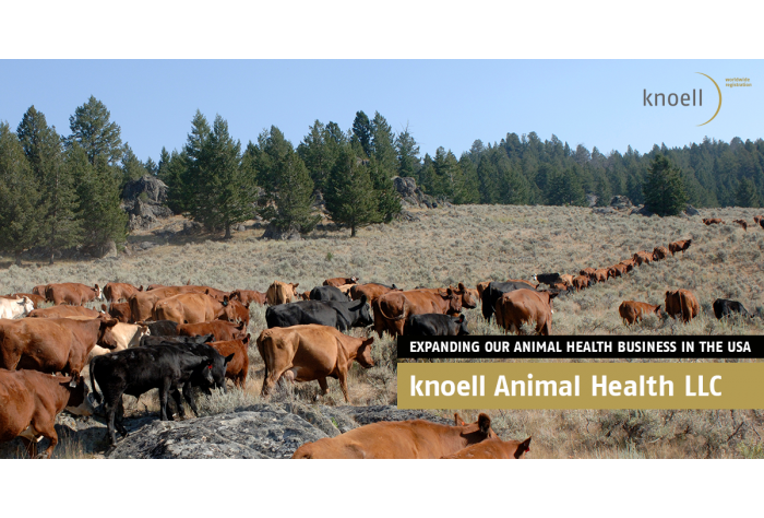 knoell Animal Health LLC
